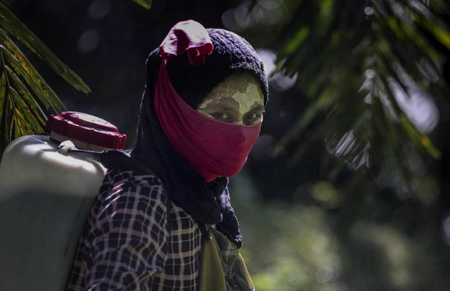 """In a photo from the """"Fruits of Labor"""" series by Associated Press reporters Margie Mason and Robin McDowell, a female worker walks with a pesticide sprayer on her back at a palm oil plantation in Sumatra, Indonesia."""