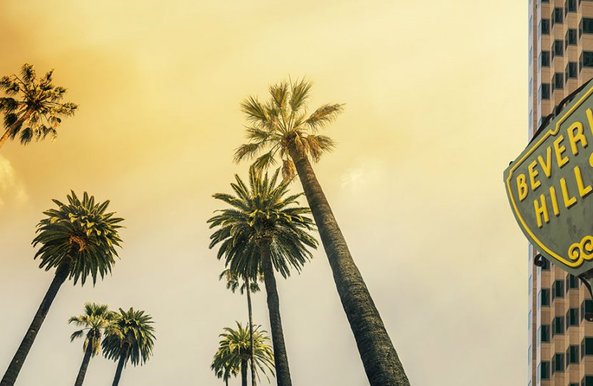 """Photo of palm trees next to a sign that says """"Beverly Hills"""""""